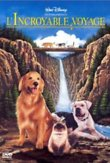 Homeward Bound: The Incredible Journey DVD Release Date