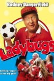Ladybugs DVD Release Date