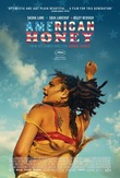 American Honey DVD Release Date