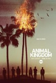 Animal Kingdom DVD Release Date
