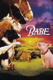 Babe DVD Release Date