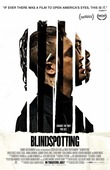 Blindspotting DVD Release Date