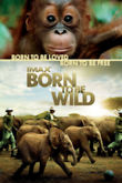 Born to Be Wild DVD Release Date