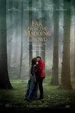 Far from the Madding Crowd DVD Release Date