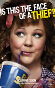 Identity Thief DVD Release Date