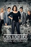 Law & Order Special Victim's Unit: Season 19 DVD Release Date