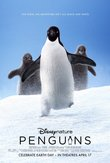 Penguins DVD Release Date