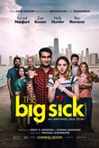 The Big Sick DVD Release Date