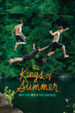 The Kings of Summer DVD Release Date