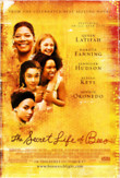The Secret Life of Bees DVD Release Date