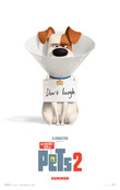 The Secret Life of Pets 2 [Blu-ray] DVD Release Date