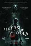 Tigers Are Not Afraid DVD Release Date