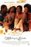 Waiting to Exhale DVD Release Date